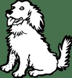 Kutyával álmodni