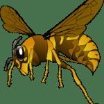 Méhekkel álmodni mit jelent? Álomfejtés az álomszótárban