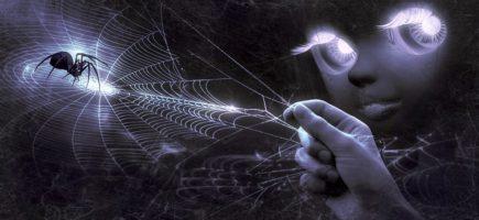 Pókkal álmodni